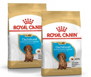 Royal Canin Dachshund Puppy 2x1,5kg