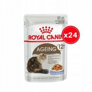 Royal Canin Ageing 12+ Jelly - w galaretce 24 x 85