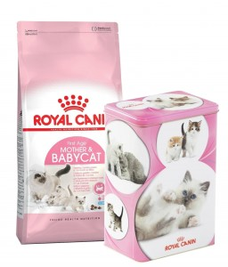 Royal Canin Mother & Babycat 2kg + PUSZKA NA KARMĘ