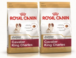 Royal Canin Cavalier King Charles Junior 2x1,5kg