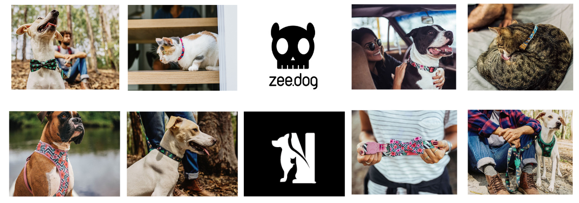 ZEE DOG Twój miejski design z NOWAYS